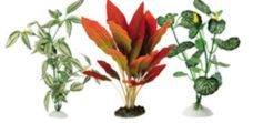 Искусственные растения шёлковые