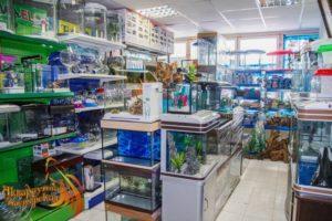 Магазин аквариумистики в Дмитрове