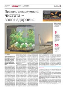 статья про рыб