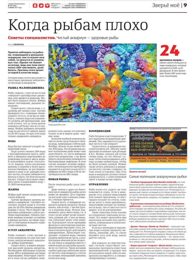 статья про больных рыбок